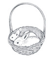 hand drawn rabbits in the vector image vector image