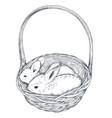 hand drawn rabbits vector image vector image