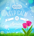 Keep calm its spring vector image vector image