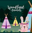 rabbit wooland animals cartoon vector image vector image