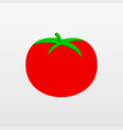 red tomato icon isolated on background modern fla vector image vector image