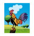 Rooster Cockerel Cock Crowing Retro vector image vector image