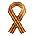 St George ribbon vector image