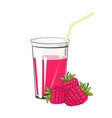 glass with raspberries juice vector image