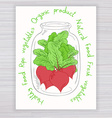hand drawn poster with jar full of beet with text vector image vector image