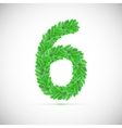 Number six made up of green leaves vector image vector image