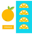 orange fruit icon set slice in a row cut half vector image vector image