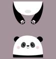 panda bear funny face head silhouette kawaii vector image