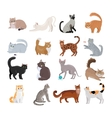 Set of Icons with Cats Flat Design vector image vector image