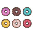 sweets donuts sugar glazed vector image