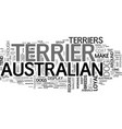 australian terriers make loyal pets text word vector image vector image