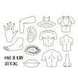 body parts icons set vector image vector image