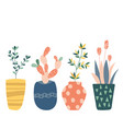cactus hand drawn set doodle flowers in pot vector image
