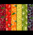 fruity rainbow background vector image vector image