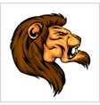 Lion head mascot - for sport vector image vector image