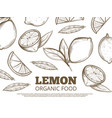 organic food poster with hand drawn lemons vector image