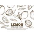 organic food poster with hand drawn lemons vector image vector image