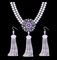 set jewelry necklaces and earrings in form vector image vector image