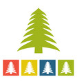 spruce new year icon vector image