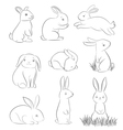cartoon rabbits vector image vector image