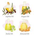hair care oils jojoba and argan amla and almond vector image