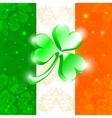 Happy Patrick day flag vector image vector image