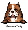head american bully - dog breed color image vector image vector image