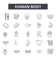 human body line icons for web and mobile editable vector image