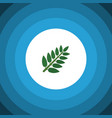 isolated leaves flat icon acacia leaf vector image