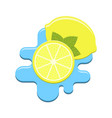 mint and lemon in water vector image