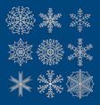 set of nine snowflakes vector image vector image