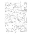 cat line art vector image