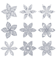 Ornament kaleidoscopic floral pattern Set of nine vector image