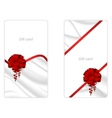 Set of two vertical elegant gift card with a silk vector image vector image