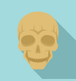smiling skull head icon flat style vector image