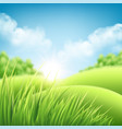 summer nature sunrise background a landscape vector image vector image
