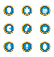 walnut icons set flat style vector image vector image