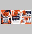 basketball sport ball winner cup and basket hoop vector image vector image
