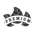 Black premium logotype vector image vector image