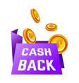 cash back guarantee economy and shopping money vector image vector image