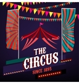 Circus Posters vintage vector image