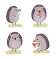 cute hedgehogs characters vector image