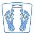floor scales icon vector image