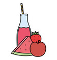 fresh watermelon and apple juice fruits in botttle vector image