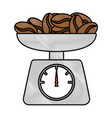 gramer with coffee seeds isolated icon vector image vector image