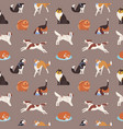 seamless pattern with cute dogs various breeds vector image vector image
