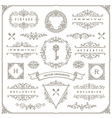 set vintage ornaments design elements vector image vector image