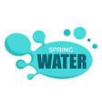 spring water isolated icon clean organic product vector image