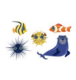 cute sea creatures collection adorable ocean vector image vector image