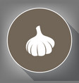 garlic simple sign white icon on brown vector image vector image